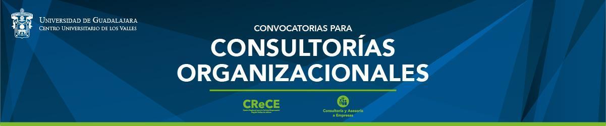 Convocatoria Consultorias Organizacionales 18B