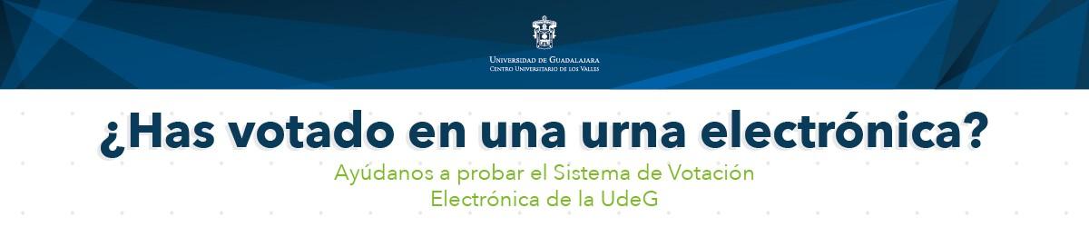prueba del sistema de votación electrónica
